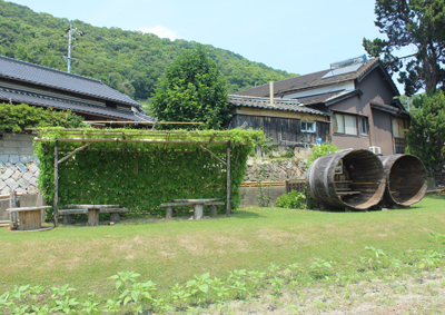 himawari8.jpg